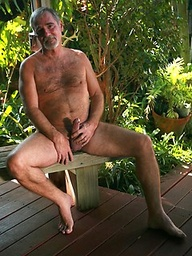 Karl Williams - Bears In Paradise
